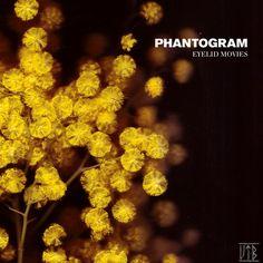 - phantogram
