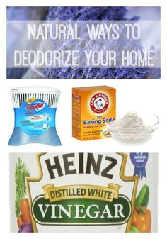 Natural Ways to Deodorize Your Home