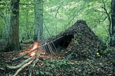 #Bushcraft #nature #camping