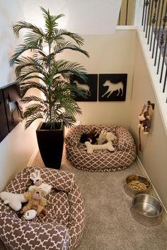 Dicas de decoração para o cantinho do cachorro!