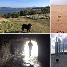 The Fife Coastal Path is 117 miles of surprises from bridges to historic sites beaches woodland walks industrial heritage to art installations and Outlander locations. So many #walks to choose from ! #fifecoastalpath #forthbridge #culross #kinghorn #aberdour #burntisland #ravenscraigcastle #dysart #outlander #eastneuk #linkscourse #linksgolf