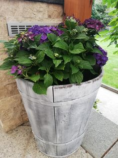 Planter Pots, Lawn And Garden