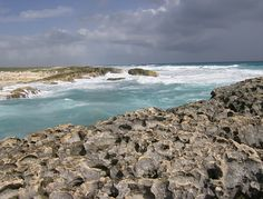 Cozumel. Been here as well
