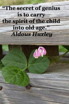 The secret of genius is to carry the spirit of the child into old age.  -- Aldous Huxley -- Explore quotes on the grace and power of life's journey at http://www.examiner.com/article/travel-a-road-of-literate-quotes-about-the-journey