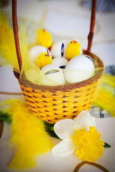 kori_2 Pavlova, Ravioli, Coconut, Eggs, Fruit, Breakfast, Holidays, Food, Morning Coffee