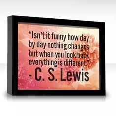 Isn't it funny how day by day nothing changes but when you look back everything is different.  -C.S. Lewis
