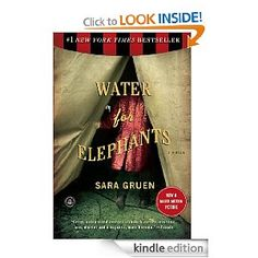 This is a great novel set during the depression era of American history.  This novel reveals the truth of what life was like during that time period, with a little bit of romance of course.