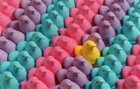 What to do with all those PEEPS?
