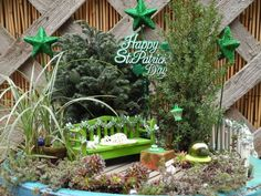 St. Patrick's Day in the Miniature Garden :: Hometalk