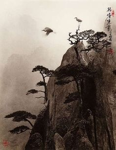 These Beautiful Chinese Ink Drawings Are Really Amazing Photographs- by Don Hong-Oai