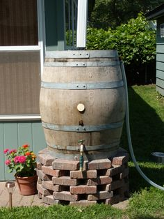 """collect rainwater for gardens. You can also layer chicken manure  on a screen on top of the barrel to add organic material to the water as a """"tea"""" for your vegetables."""
