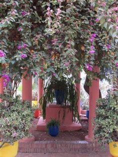 Jardin Majorelle, Marakech, Marokko | ARTIMPRESA