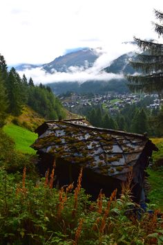 Switzerland: What a beautiful country. We enjoyed so much exploring the wild mountains, eating that delicious food and relaxing with such unparalleled views! Zermatt, Travel Activities, Travel And Leisure, Travel Europe, Alps, Travel Pictures, Delicious Food, Austria, Exploring