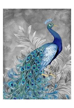 - Description - Why Accent Canvas? This exquisite Peacock Botanical 2 Animal Canvas Wall Art Print by Nicole Tamarin is created using quality fade resistant inks on a premium cotton canvas to ensure d Peacock Wall Art, Peacock Painting, Peacock Decor, Peacock Colors, Peacock Design, Peacock Feathers, Peacock Pictures, Art Pictures, Art Images