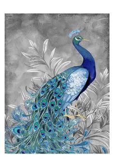 Peacock Botanical 2