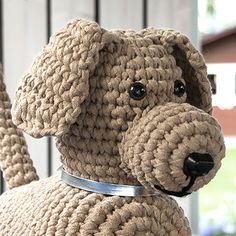 OHJE: Laikku-koira lankava ontelokuteesta ovistoppari