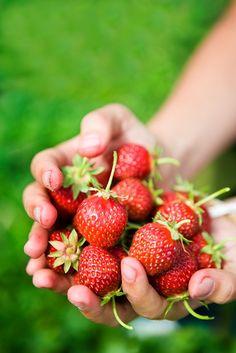 Drømmer om norske jordbær =) 3940718394375050_yNLIhEsl_c