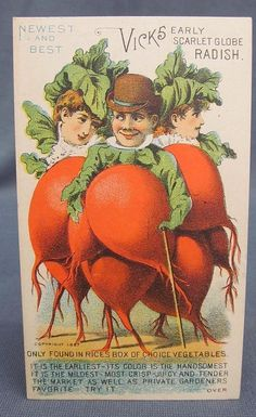 Victorian Trade Card Advertising Vicks Radish Rices Seeds Anthropomorphic Man | eBay
