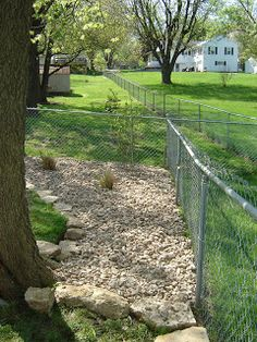 I Have Had Up To Four At Time Dogs A And Almost An Acre Of Backyard My Wife Like Nice Yard But Not Necessarily Manicured