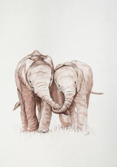 "Elephant Love - ""Love Hangs on Forever"" by Lila"