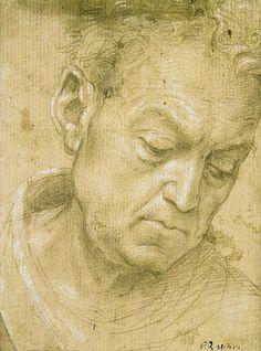 Filippino Lippi - Head of an old man