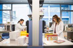 MujerYCiencia > Matilda en el laboratorio y De Marie Curie a la igualdad