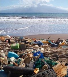 """O lixo marinho é a principal ameaça para todos os oceanos do mundo, mas é particularmente deplorável no oceano Pacífico, onde se concentrou para formar """"manchas de lixo"""" nas áreas leste e oeste do oceano Pacífico do Norte.   Read more: http://iipdigital.usembassy.gov/st/portuguese/inbrief/2013/06/20130606275575.html#ixzz2rnOEdEuS"""