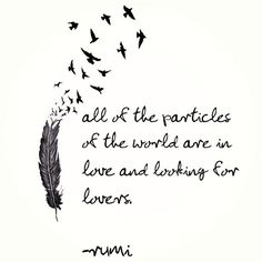 "YES!! ""All the particles of the world are in love and looking for lovers."" ~Rumi"