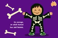 fun facts for #kids - bones human skeleton - #education #science Cikgu.tv e-learning for kids