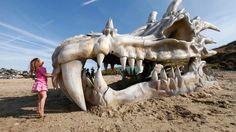 Giant Dragon Skull Discovered On Dorset Beach