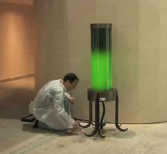 Algae Lamps Generate Energy And Use More CO2 Than Trees    ---  from InventorSpot.com --- for the coolest new products and wackiest inventions.