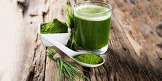 20 antibióticos naturais e alimentos que melhoram a imunidade
