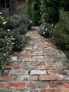 How to create a stunning garden path