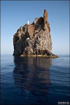 Stromboli (Strombolicchio), Isole Eolie. Residenza della rarissima Lucertola nera delle Eolie. Aeolian wall lizard, Podarcis raffonei. www.nesos.org