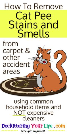 Carpet Cleaning Hacks: How To Remove Cat Pee Stains and Smells using common household items. Homemade cat urine cleaner recipe from Decluttering Your Life House Cleaning Tips, Diy Cleaning Products, Cleaning Solutions, Cleaning Hacks, Speed Cleaning, Organizing Tips, Cat Pee Smell, Cat Urine Smells, Simple Life Hacks