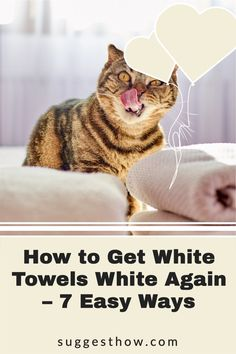 Say bye to dingy towels with these DIY fixes to keep your towels at its whitest. It is a fact that any white laundry gets dirty easily and is difficult to maintain. When your fluffy white towels begin to have stains, specks, graying and discoloring, you'll be wondering how to get white towels white again. #householdtips #cleaning #naturally Deep Cleaning Tips, Household Cleaning Tips, Cleaning Walls, Yoga For Flat Belly, Oxygen Bleach, White Towels, Housekeeping, Clean House, Laundry