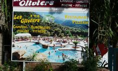 Camping les Oliviers Camping, Corsica, Aquarium, Painting, Art, Olive Tree, Campsite, Goldfish Bowl, Art Background