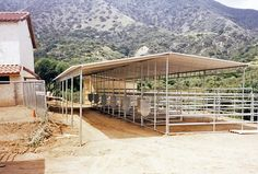 Roof panels can be added to pipe corral panels to provide your horse shelter with cool shade in the summer and protection from the rain in the winter. Horse Pens, Equestrian Stables, Horse Paddock, Cattle Barn, Horse Barn Designs, Horse Corral, Horse Shelter, Horse Barn Plans, Run In Shed