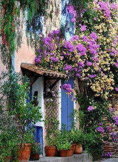 houses, flowering vines, purple, blue doors, gardens