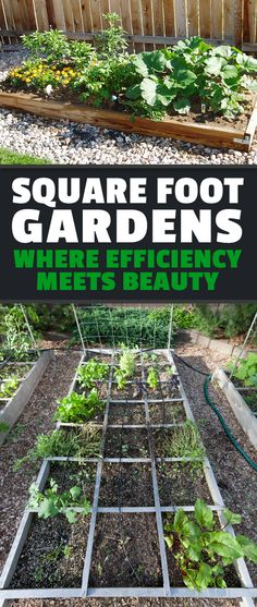 Low on space but want to grow your own food? Check out these awesome square foot garden ideas and turn efficiency & beauty into self sufficiency.