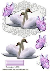 Witte Zwanen Met Roze Vlinders In sierlijke Frame
