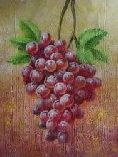 grapes with vine