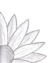 Doodle Daisy Drawing: I started drawing and ended up with this. a daisy… Doodle Daisy Drawing: I started drawing and ended up with this. Pencil Art Drawings, Drawing Sketches, Sketching, Easy Sketches To Draw, Drawing Drawing, Simple Sketches, Horror Drawing, Random Drawings, Good Sketches