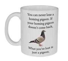 Pigeon Fanciers Racing Pigeon Windows Sticker x6 stickers