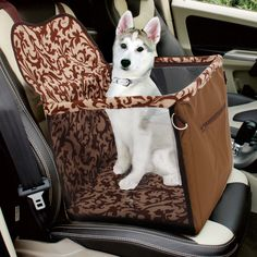 Domestic Delivery Pet Dog For Travel Bag Pet Carrier Ventilation High Quality Dog Cat Bag Car Travel Accessories Pet Products
