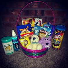 Put together the perfect easter basket for your dog httpwww doggy easter basket negle Image collections