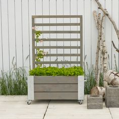 Plus Cubic blomsterkasse m. Privacy Planter, Backyard, Patio, Wood Planters, Tiny House Plans, Clematis, Shade Garden, Outdoor Furniture, Outdoor Decor