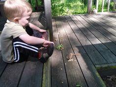 Jayden feeding the chipmunks