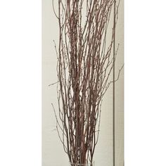 @curiouscountry posted to Instagram: Natural Birch Branches are a great statement piece for any time of the year, but they look especially great as an accent to Fall decor. In fact, they are one of our BEST SELLING products!  Add them to a vase or basket, lay them on your mantle, or stand them up in a corner.... you will love what they add to your space! #falldecor #falldecortour #autumndecor #autumn #fall #homedecor #decoratingtips #decorating #mystyle #fallstyle #september #farmhouse #farmhous