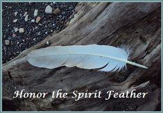 Honor The Spirit Feathers... balancedwomensblog.com